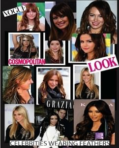 feather hair extensions Voodou celebrities