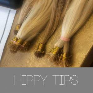 HIPPY-TIPS-2